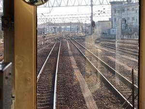 oari493.jpg